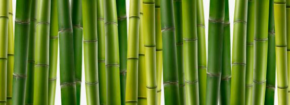 bambus f r kreative m bel m bellexikon. Black Bedroom Furniture Sets. Home Design Ideas